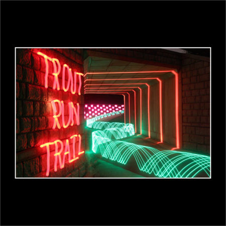 """Trout Run Trail Tunnel"""